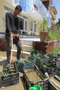 Nisar Works in the Centre Garden